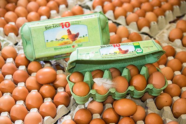 Eier vom Hornbrooker Hof