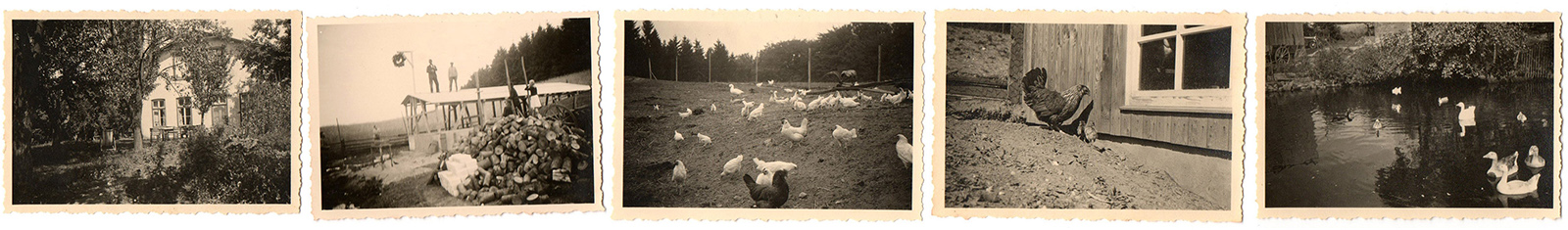 Hornbrooker Hof in den 30er Jahren